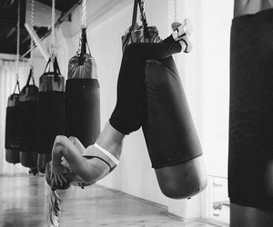 fitness, workout, and boxing image