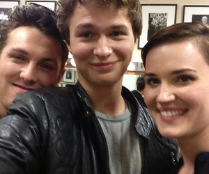 divergent, ansel elgort, and veronica roth image