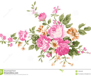 flowers, nature, and peony image