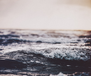 nature, sea, and water image