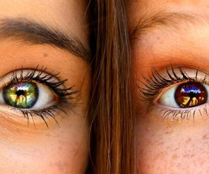 eyes, brown, and green image