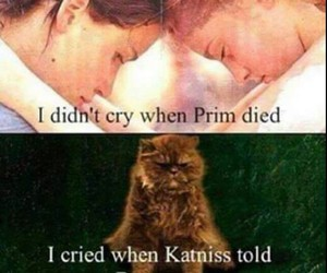 prim, katniss, and buttercup image