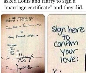 love is love, louis tomlinson, and larry stylinson image