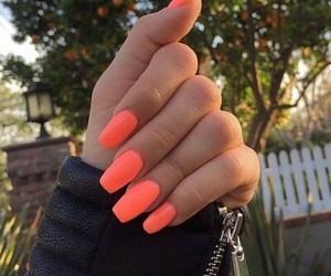 fashion, long, and nails image