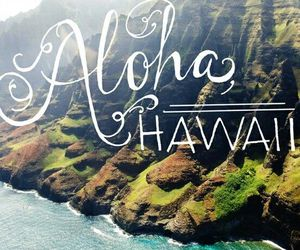 hawaii, Aloha, and summer image