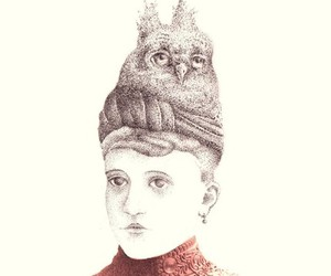 hat, owl, and victorian image