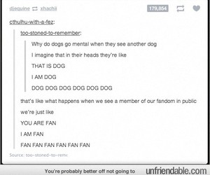 dogs, funny, and harry potter image