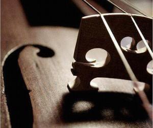 bridge, instrument, and music image