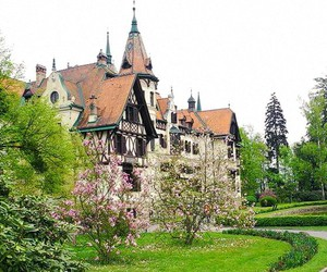 castle, zoo, and garden image