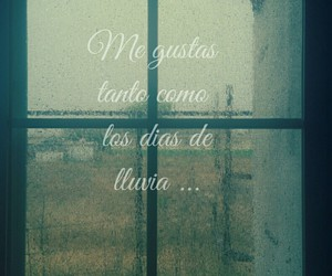 amor, frases, and lluvia image