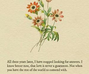 poem, love, and Lang Leav image