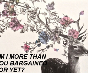 deer, song, and fall out boy image