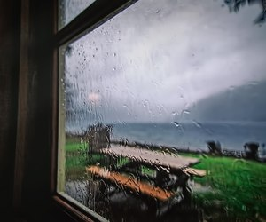 nature, rain, and window image