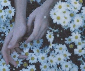 flowers, grunge, and hands image