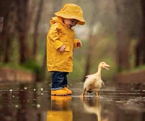 duck, kids, and rain image