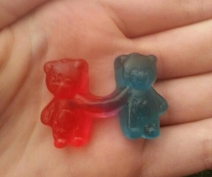 bears, cool, and pretty image