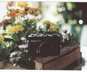 vintage, flowers, and camera image