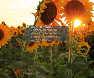 flowers, inspirational, and inspired image