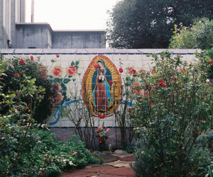 art, bushes, and mexicano image