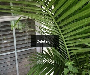 delete, green, and grunge image