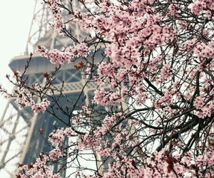 paris, pretty, and love image