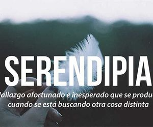 serendipia, words, and find image