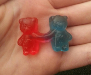 bear, couple, and forever image