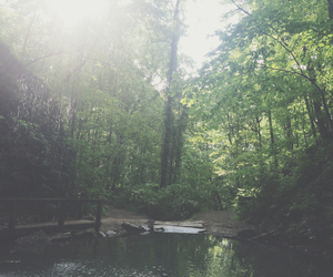 good day, hiking, and nature image
