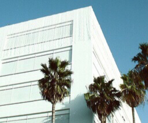 building, blue headers, and palm trees image