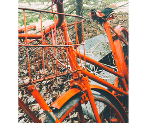 bicycle, grunge, and picture image