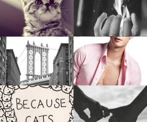 cat, magnus, and the mortal instruments image