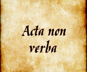 quotes, latin, and latin quotes image
