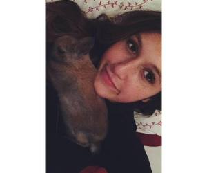 baby animal, bed, and soft image