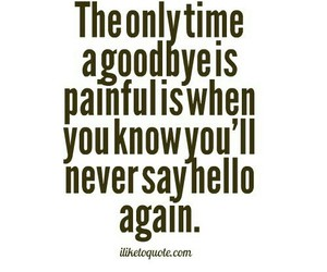 goodbye, painful, and quote image