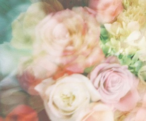 blurred, flowers, and photography image