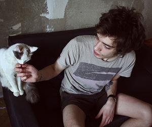 animal, boy, and cat image