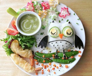 food and owl image