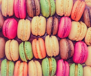 macaroon and pink image