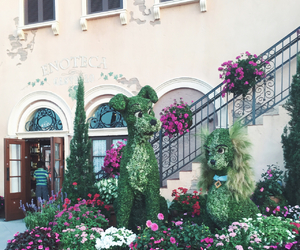 disney, flowers, and france image