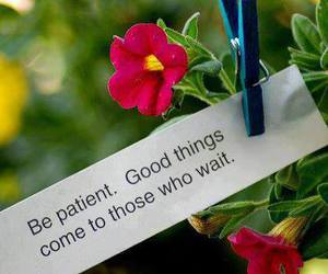 quote, wait, and patience image