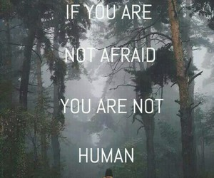 afraid, human, and forest image