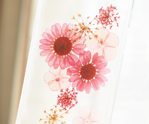 daisy, flowers, and gift image