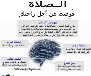 فوائد الصلاة image