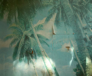 blue, palms, and phototgraphy image