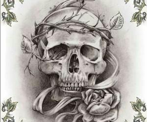 skull, art, and beautiful image