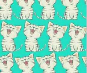 background, cat, and kittens image