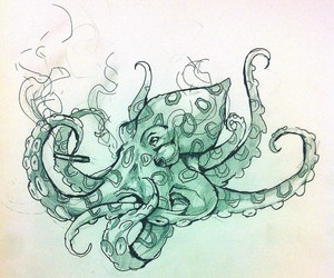 octopus drawing, blue ringed octopus, and octopus art image