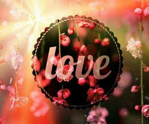 flowers, love, and lovely image