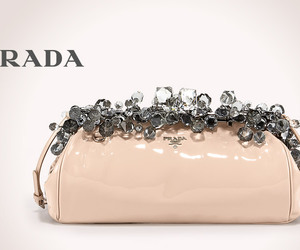 Prada and purse image