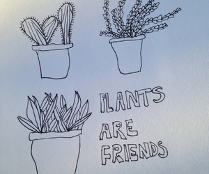 artist, cactus, and drawing image